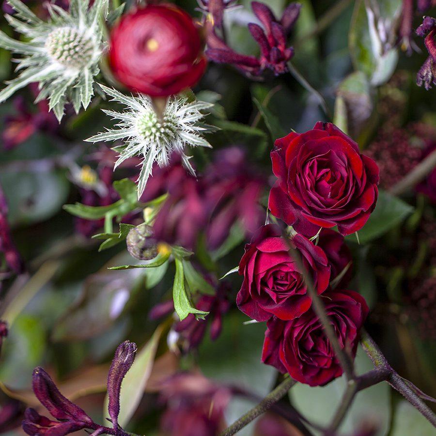 centro-rosas-valencia