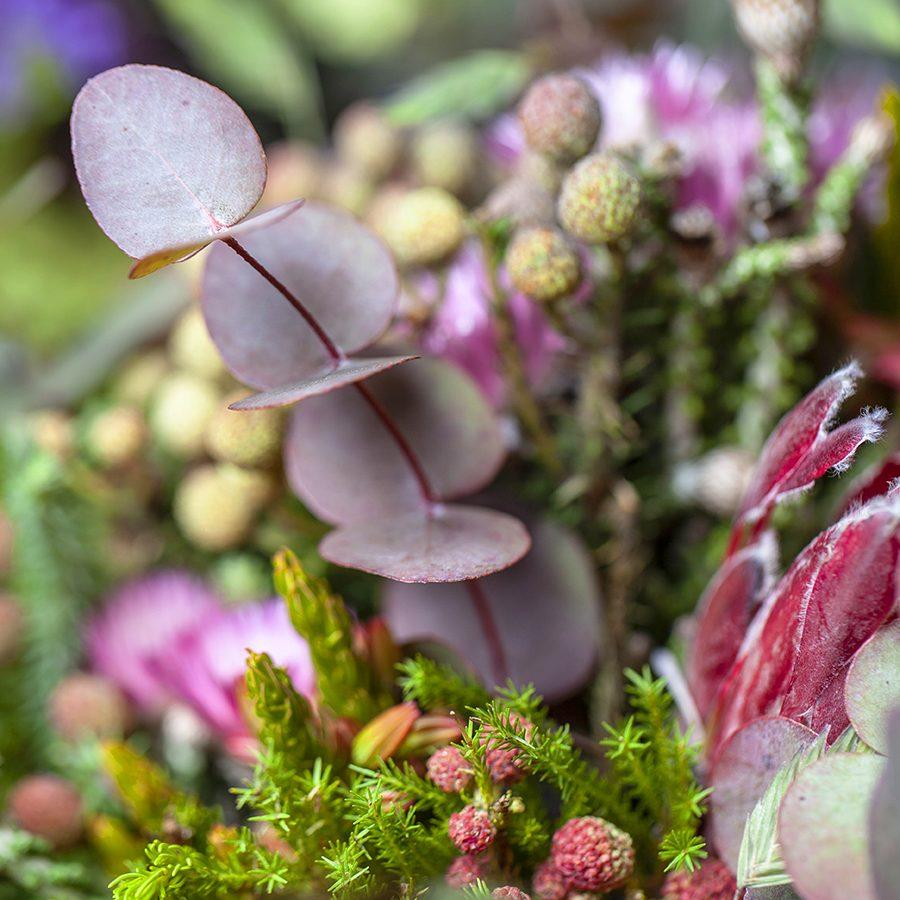 comprar-flores-internet-valencia