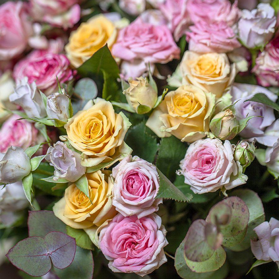 comprar-ramo-de-rosas-online