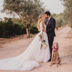 perro-bodas