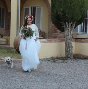 collar-correa-perro-boda