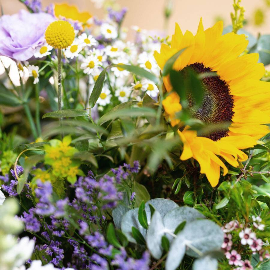 centro-valencia-flores