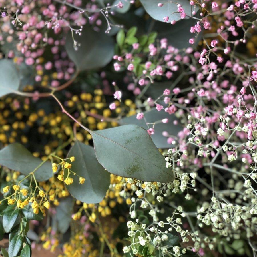 caja-flores-colores
